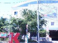 ダンロップスポーツクラブ平塚店の4階がテニスDIO湘南です。